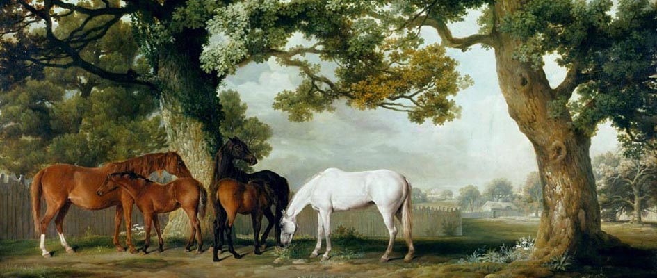 Mares and Foals _ Goerge Stubbs