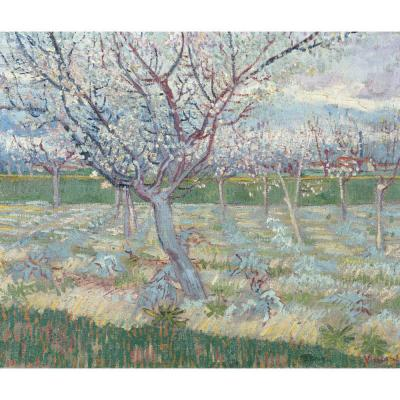 Gogh, V van - Apricot Trees in Blossom, 1888